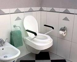 TOILET RAISED RELAX WITH LID AND ARMRESTS 10cm